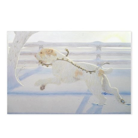 Winter Spinone Postcards (Package of 8)