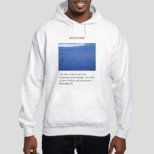 95960 Hooded Sweatshirt