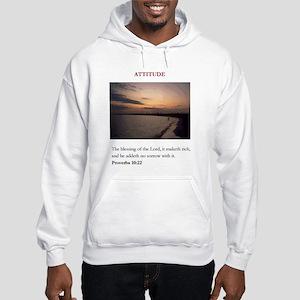 95965 Hooded Sweatshirt