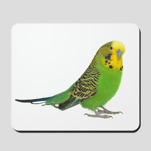 Green Parakeet Mousepad