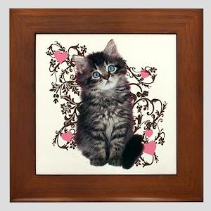 Cute Blue-eyed Tabby Cat Framed Tile