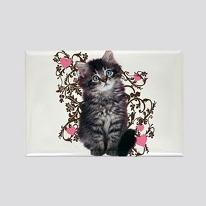 Cute Blue-eyed Tabby Cat Rectangle Magnet