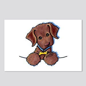 Chocolate Lab Postcards (Package of 8)