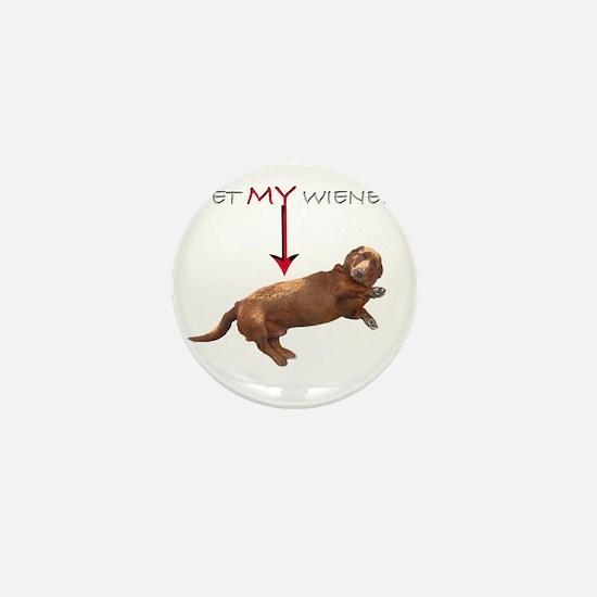 Pet My Wiener Mini Button