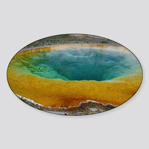 Morning Glory Pool Sticker (Oval)
