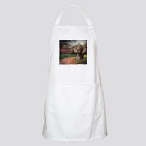 """""""Why God Made Dogs"""" GSP Apron"""