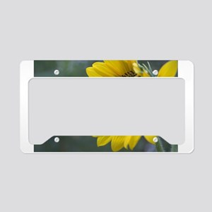 Sunflower with Tiny Bee License Plate Holder
