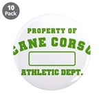Cane Corso Athletic Dept 3.5