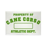 Cane Corso Athletic Dept Rectangle Magnet (100 pac