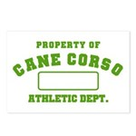 Cane Corso Athletic Dept Postcards (Package of 8)