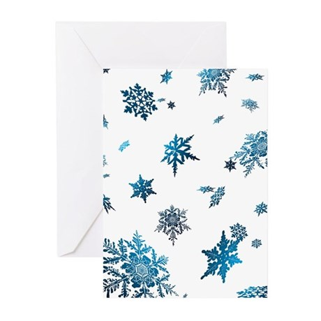 Winter Designs Greeting Cards (Pk of 20)