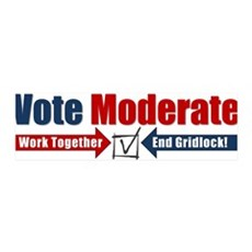 Vote Moderate 42x14 Wall Peel