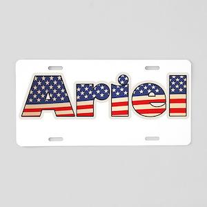 American Ariel Aluminum License Plate