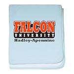 Falcon University baby blanket