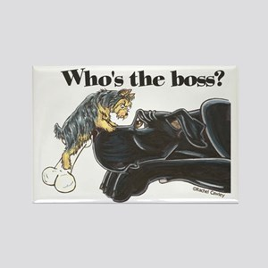 NB/Yorki Who's The Boss? Rectangle Magnet
