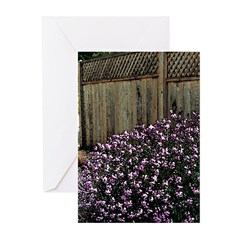 Fence with Wallflowers Greeting Cards (Pkg/6)