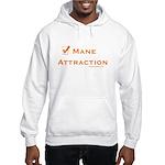 Attraction Hooded Sweatshirt