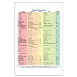 Physical Quantities Large Poster