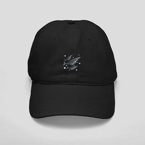 Humpback Whale Black Cap