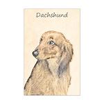 Dachshund (Longhaired) Mini Poster Print