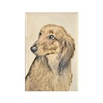 Dachshund (Longhaired) Rectangle Magnet (100 pack)