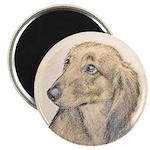 Dachshund (Longhaired) Magnet