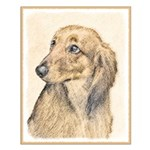 Dachshund (Longhaired) Small Poster
