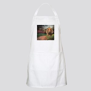 """Why God Made Dogs"" Dachshund Apron"