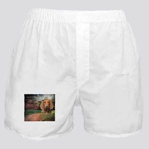 """Why God Made Dogs"" Dachshund Boxer Shorts"