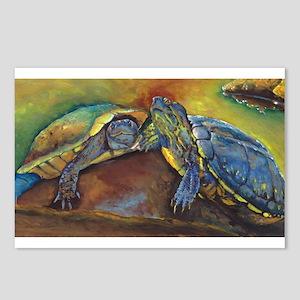 Turtles Postcards (Package of 8)