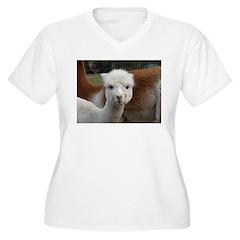 BABY ALPACA T-Shirt
