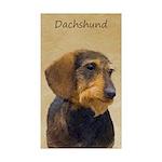 Dachshund (Wirehaired) Sticker (Rectangle 10 pk)