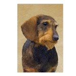 Dachshund (Wirehaired) Postcards (Package of 8)