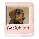 Dachshund (Wirehaired) baby blanket