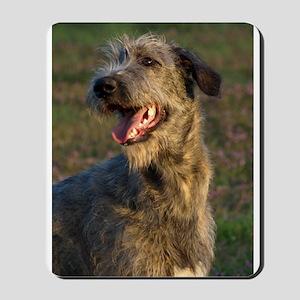 Young Irish Wolfhound (W) Mousepad