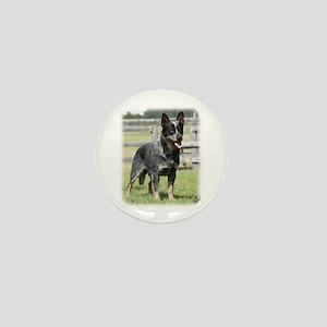 Australian Cattle Dog 9Y749D-017 Mini Button