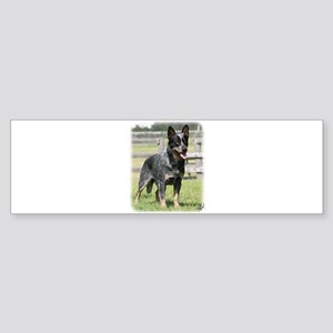 Australian Cattle Dog 9Y749D-017 Sticker (Bumper)
