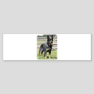 Australian Cattle Dog 9Y749D-017 Sticker (Bumper)
