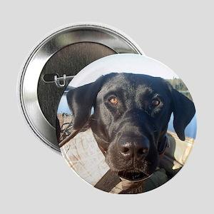 """Black Labrador Retriever 2.25"""" Button"""