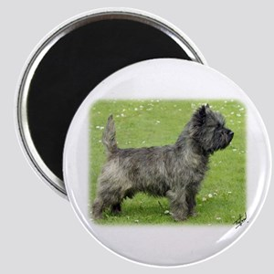 Cairn Terrier 9Y004D-024 Magnet