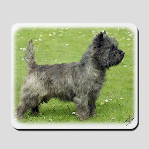 Cairn Terrier 9Y004D-024 Mousepad
