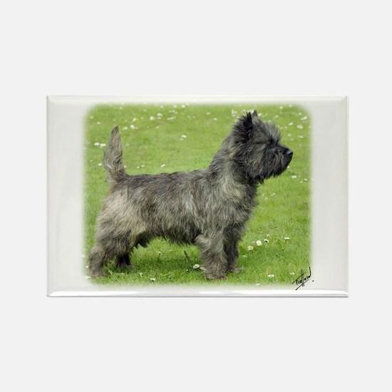Cairn Terrier 9Y004D-024 Rectangle Magnet