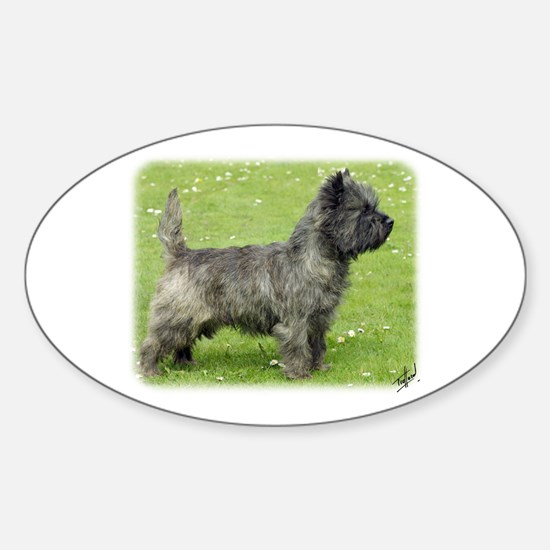 Cairn Terrier 9Y004D-024 Sticker (Oval)