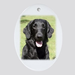 Flat Coated Retriever 9Y040D-040 Ornament (Oval)
