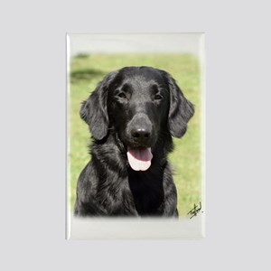 Flat Coated Retriever 9Y040D-040 Rectangle Magnet
