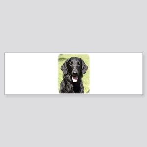 Flat Coated Retriever 9Y040D-040 Sticker (Bumper)