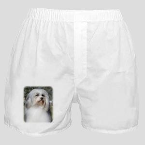 Lowchen 9Y400D-088 Boxer Shorts