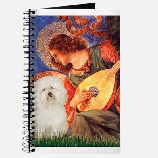 Mandolin Angel & Bolognese Journal