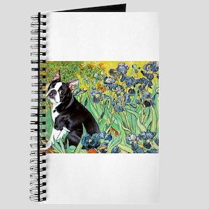 Irises & Boston Ter Journal