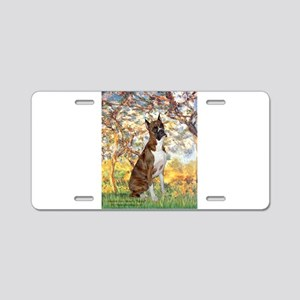Spring with a Boxer Aluminum License Plate